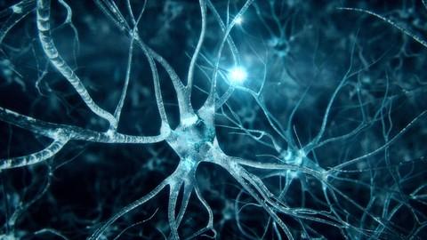 Marketing Y Persuasión De Neurociencias [OUT NOW]