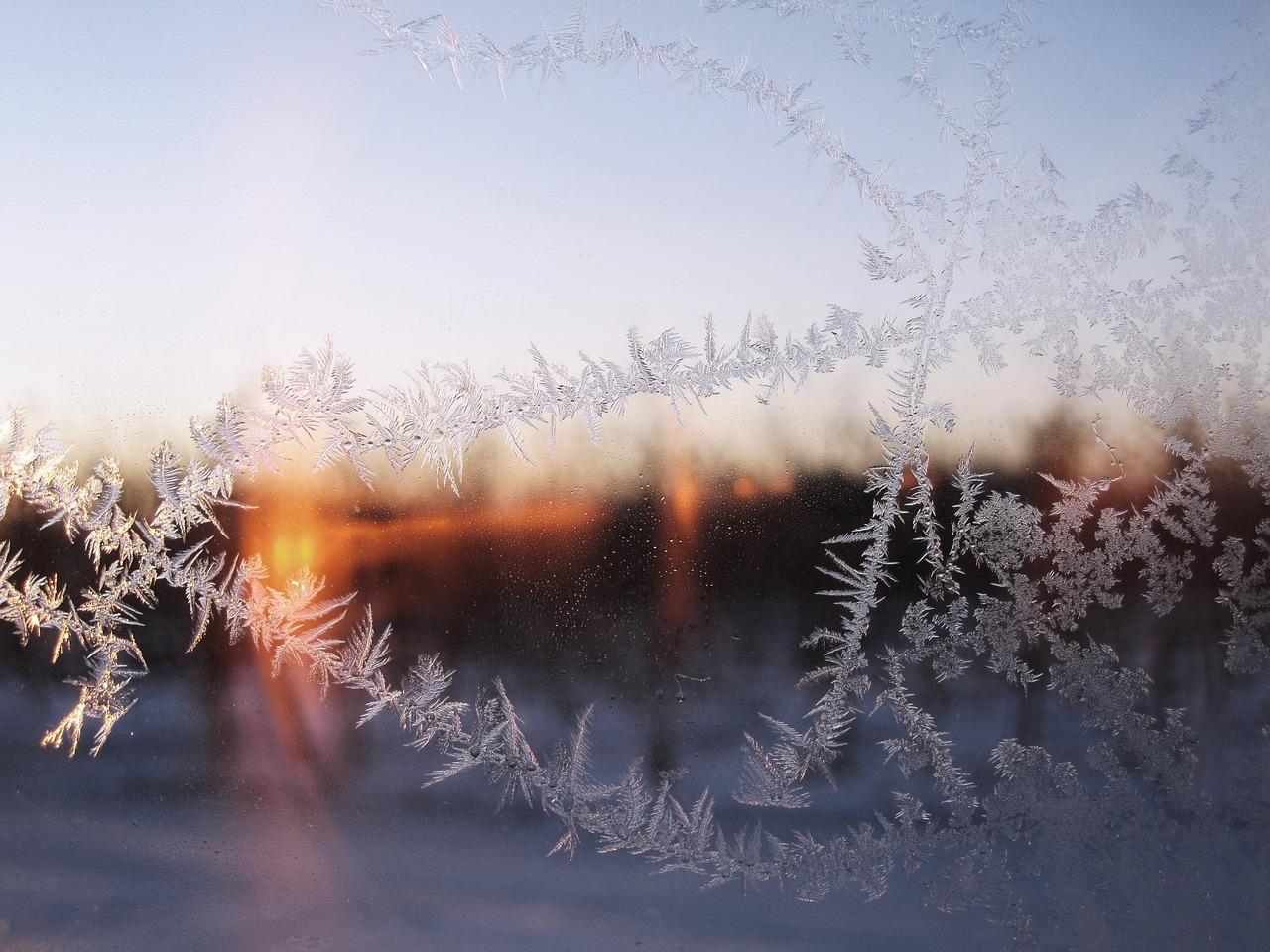 Mejores Cursos de Refrigeración en Línea
