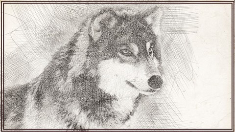 Cómo dibujar Animales - Dibujo artístico