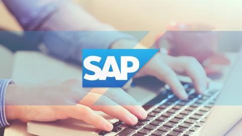 Como ser un Experto en SAP Report Painter