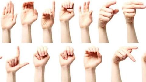 Curso Básico de Lengua de Señas Mexicana