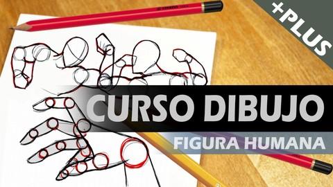 Curso de dibujo: figura humana