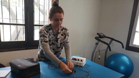 Curso de Electroestimulación - Fisioterapia en el Perro