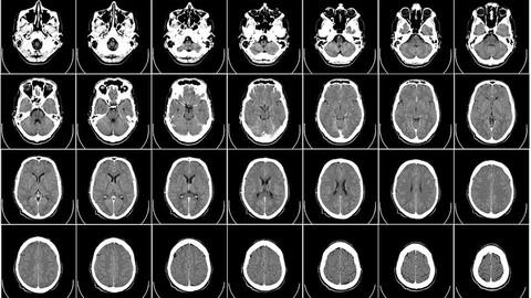 Derecho penal, física y neurociencias