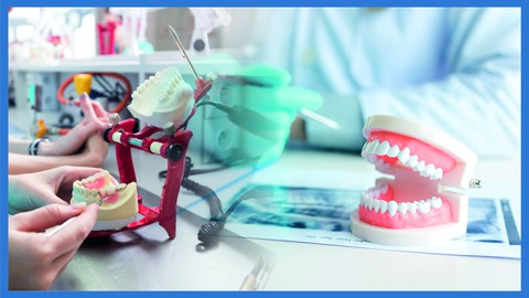 Elabora Prótesis Dentales. Prótesis dentales completas desde cero