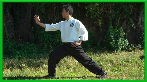 ESTJQA - Introducción al TaiJi Quan / Tai Chi estilo Chen