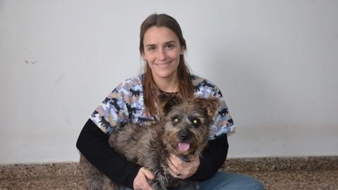 Fisioterapia Veterinaria : Kinesiterapia canina