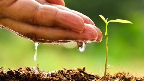 ISO 14001:2015 Sistemas de Gestión Ambiental