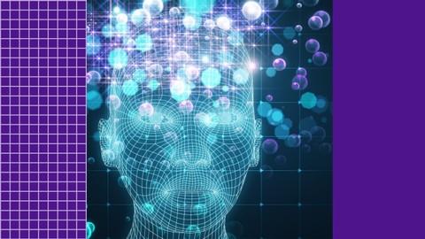La inteligencia emocional en el día a día. Agenda, ejercicios, historias y mucho más