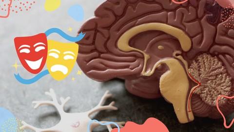 Neurociencia, educación y arte