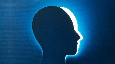 Neurociencia en los negocios