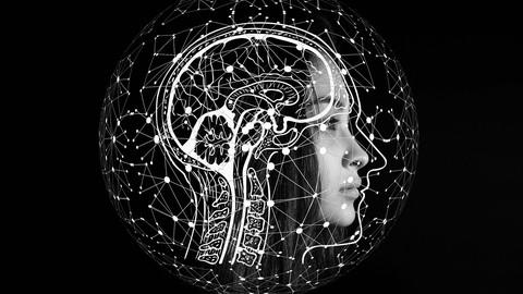 Neurociencia Práctica Para Todos