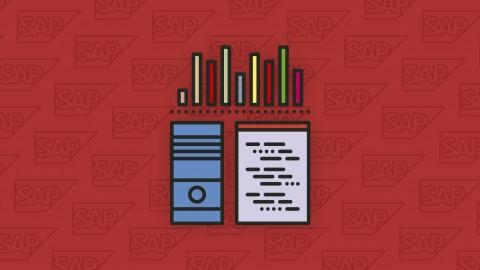 Qué es SAP - Curso básico de introducción