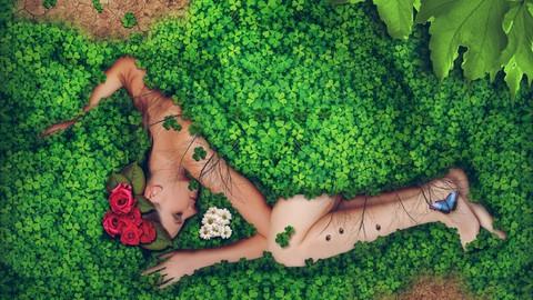 Sanación con hierbas para Mujeres - Descubre la energía vibracional de las plantas